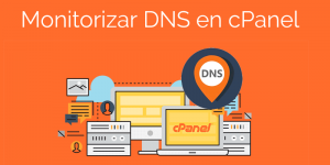 Monitorizar DNS en cPanel